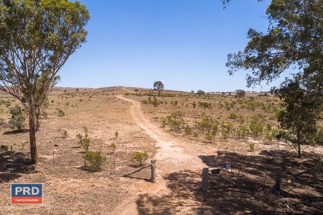 Picture of 2853 Rugby Road, BEVENDALE NSW 2581
