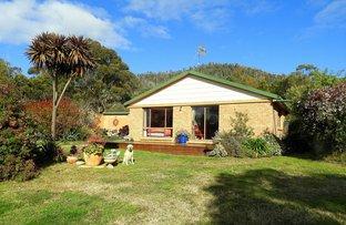 Picture of 21384 Tasman Hwy, Four Mile Creek TAS 7215
