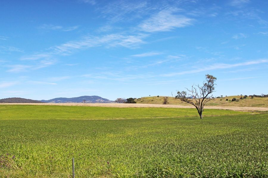 79 Bryans Gap Road, Tenterfield NSW 2372, Image 1