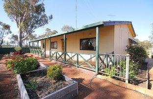 Picture of 26 Parramatta Rd, Throssell via, Northam WA 6401