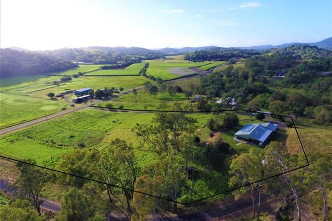 Picture of 39 Olletts Road, HABANA QLD 4740