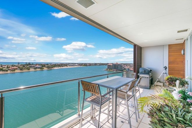 Picture of 703/145 Brebner Drive, WEST LAKES SA 5021