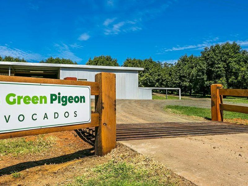 702 Green Pigeon Road, Green Pigeon NSW 2474, Image 0