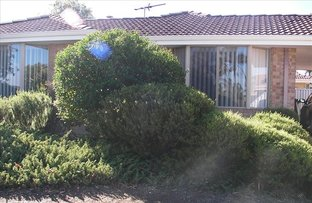 Picture of 1 Silkborg, Joondalup WA 6027