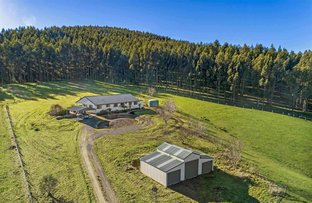 Picture of 137 O'Tooles Road, Wild Dog Valley VIC 3953