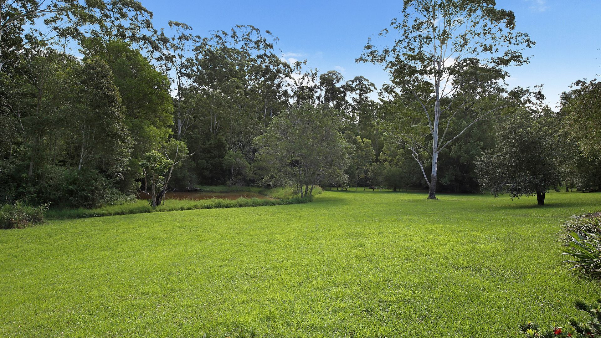 135 Black Pinch Road, Pomona QLD 4568, Image 1