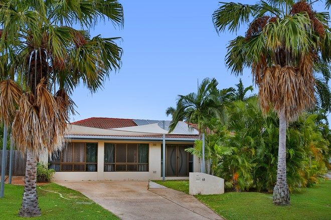 Picture of 68 Casuarina Drive, ANNANDALE QLD 4814