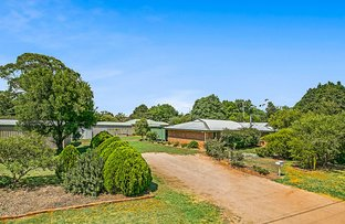 Picture of 21 Blue Gum Drive, Highfields QLD 4352