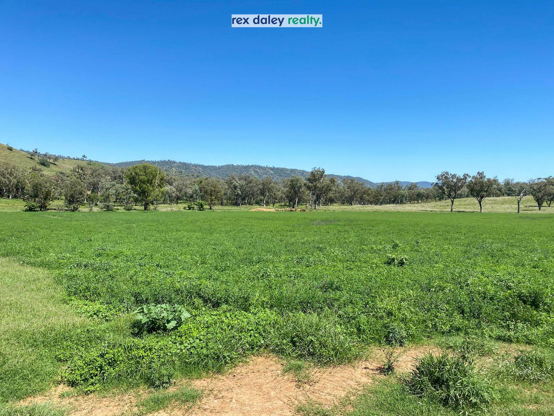 3674 Cobbadah Road, Bingara NSW 2404, Image 2