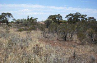 Picture of 11 FRY STREET, Mullewa WA 6630