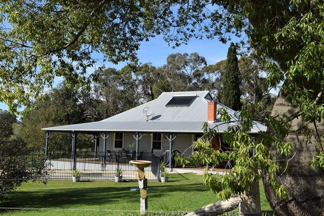 Picture of 'Glen Ora' 300 Burrel Creek Rd, DRIPSTONE NSW 2820