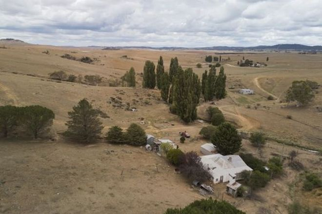 Picture of Willow Glen 675 Matong Road, NUMBLA VALE NSW 2628