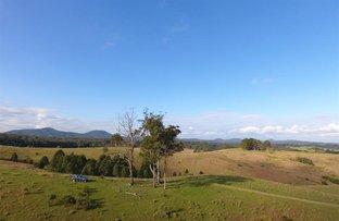 Lot 100 Glen Ayre Rd, Girvan NSW 2425