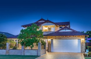 Picture of 31 Careniup Avenue, Gwelup WA 6018