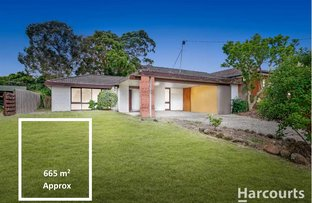 Picture of 9 Citrus Street, Vermont South VIC 3133