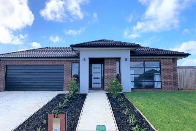 Picture of 12 Witton Boulevard, WARRNAMBOOL VIC 3280