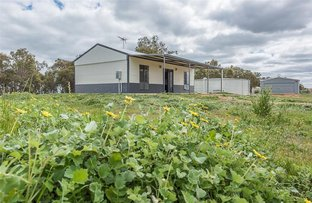 Picture of 249 Turtledove Drive, Lower Chittering WA 6084