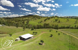 Picture of 1260F Belbora Creek Road, Gloucester NSW 2422