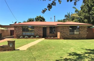 Picture of 26 Claret Street, Wilsonton Heights QLD 4350