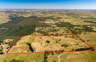 Picture of 113 Kellys Road, Fitzgeralds Mount NSW 2799