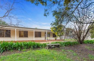 Picture of 22 White Avenue, Romsey VIC 3434