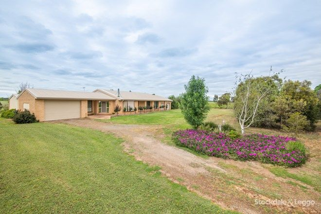 Picture of 1245 Turnbull Road, TOOLAMBA VIC 3614