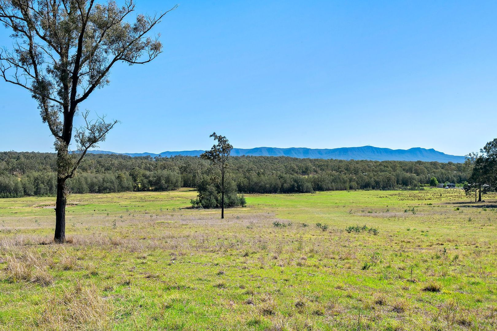 Lot 9/1432 Wine Country Drive, Rothbury NSW 2320, Image 2