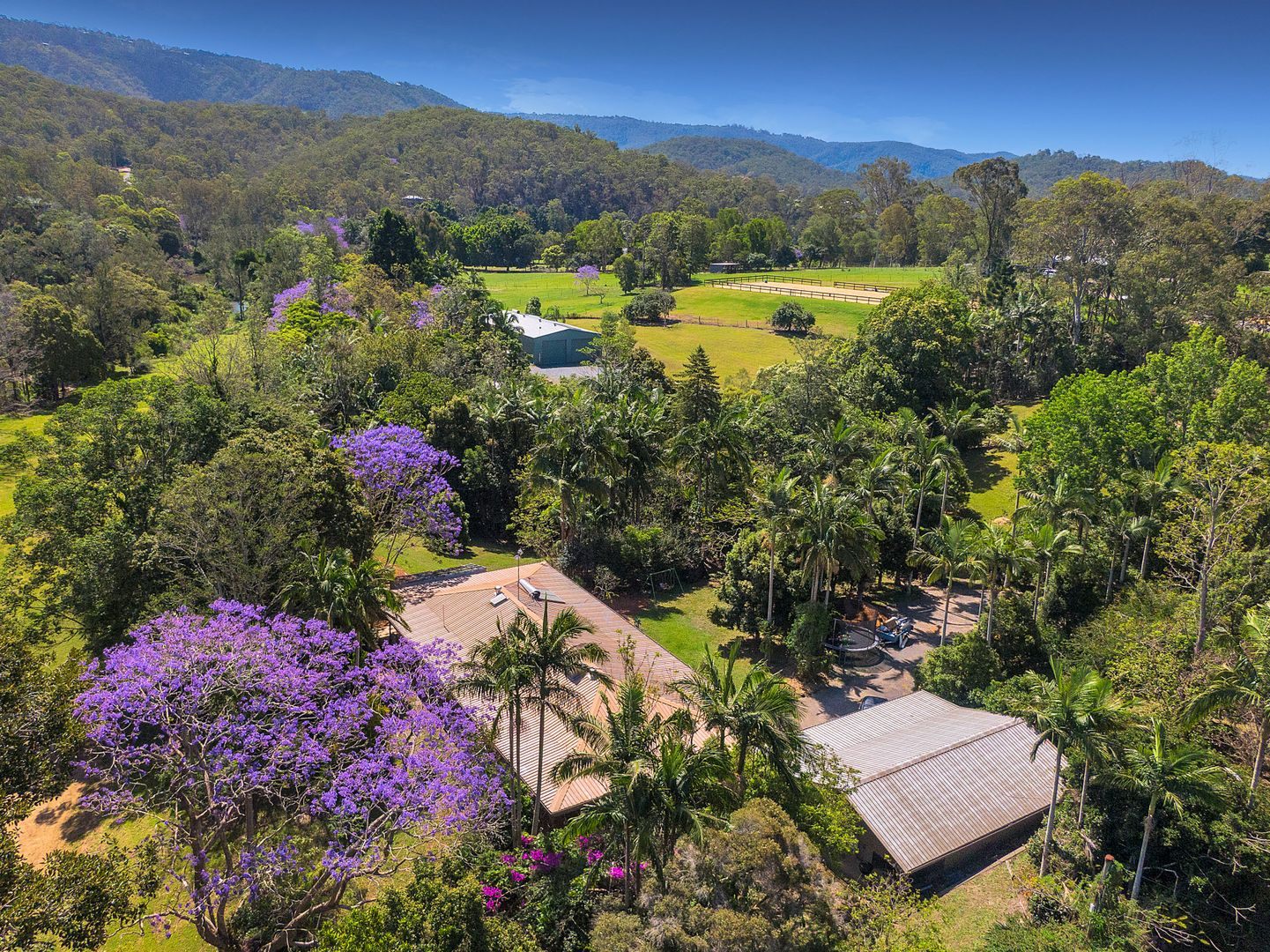 16 Heritage Drive, Mount Nathan QLD 4211, Image 2