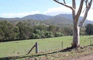 Picture of Lot 13 Roma Road, Merriwa NSW 2329