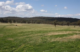 Picture of 4403  Bylong Valley Way, Rylstone NSW 2849
