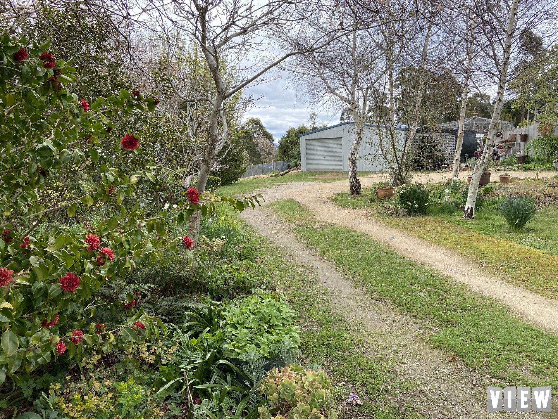 251 Lohreys Road, St Marys TAS 7215, Image 2