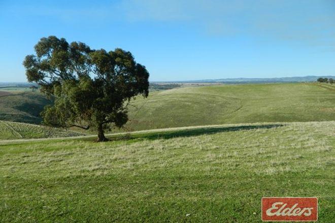 Picture of Prop Lot 204 Gawler One Tree Hill Road, BIBARINGA SA 5118