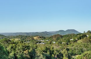Picture of 16 Blueberry Lane, Eumundi QLD 4562