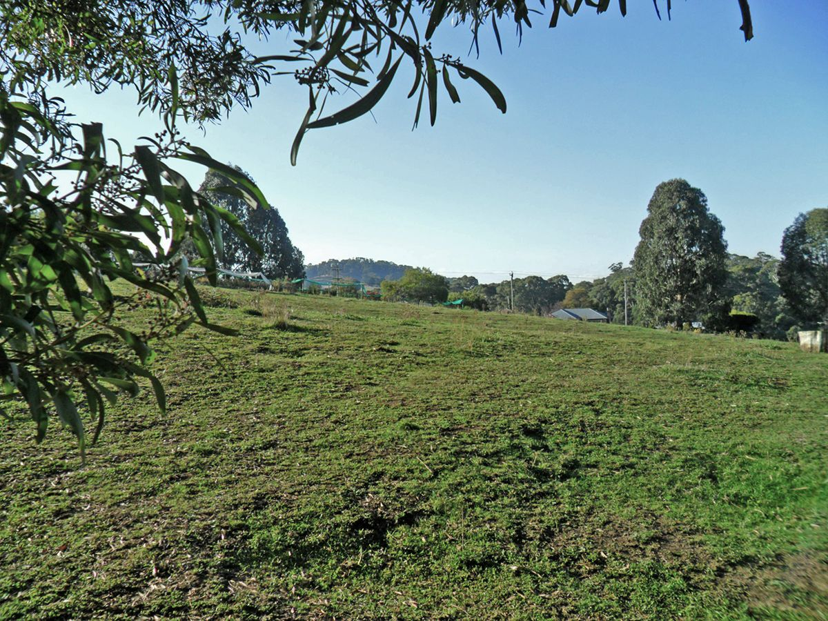 252 Mayday Road, Batlow NSW 2730, Image 0