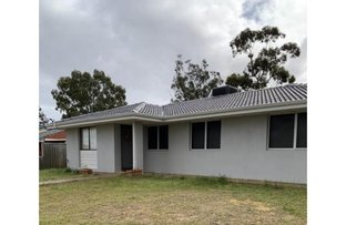 Picture of 1 Quail Place, Langford WA 6147