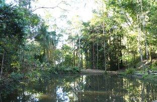 Picture of 535 UPPER LANDERSHUTE ROAD, Palmwoods QLD 4555