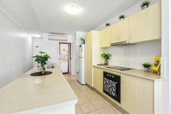Picture of Level 1, 6/93-95 McLeod Street, CAIRNS CITY QLD 4870