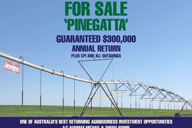 """Picture of """"Pinegatta"""" Avalon Rd, DENILIQUIN NSW 2710"""