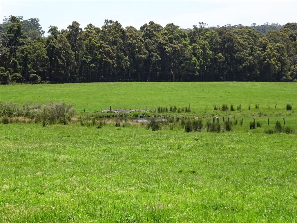 Lot 10254 Wheatley Coast Road, Northcliffe WA 6262, Image 0