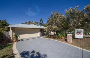 Picture of 4 ANISSA PLACE, Upper Coomera QLD 4209