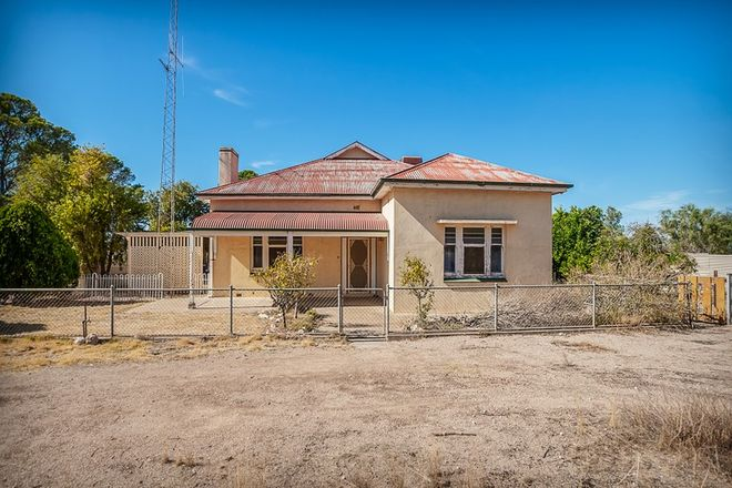 Picture of 1156 Bute Rd, WILLAMULKA SA 5554