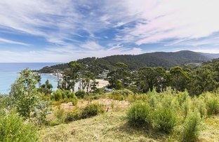 Picture of 27 Durimbil Avenue, Wye River VIC 3221