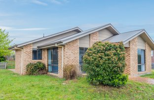 Picture of 6 Otto Circle, New Norfolk TAS 7140
