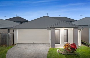 Picture of 18 Champion Crescent, Griffin QLD 4503