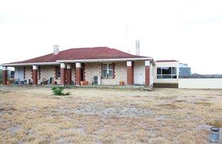 1221 Tooligie Hill Road, Tooligie SA 5607