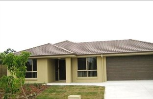 Picture of 9 Willowood Pl, Fernvale QLD 4306