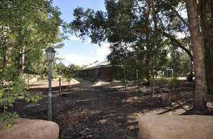 Picture of 43 Song Place, Manjimup WA 6258