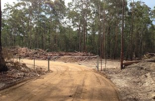 Picture of Lot 1 Percy Davis Drive, Moruya NSW 2537