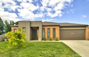 Picture of 19 Phoebes Way, Eastwood VIC 3875