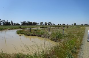 Picture of Lot 1 Murray Valley Highway, Echuca VIC 3564